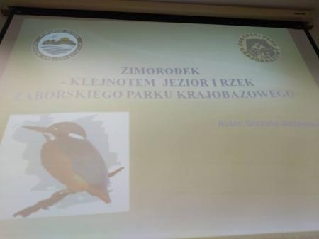 Zimorodek – klejnotem jezior i rzek Zaborskiego Parku Krajobrazowego